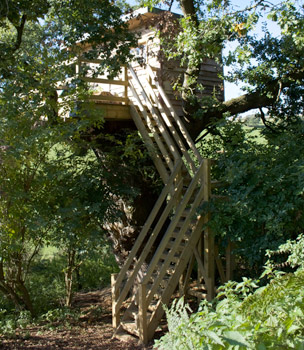 Bespoke Tree House